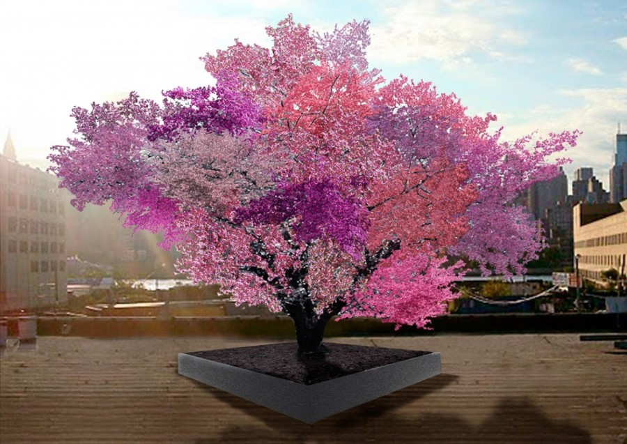 Artist rendition of mature Tree of 40 Fruit